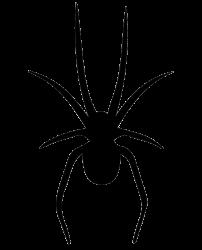 SPIDER STUDIOS BEATS